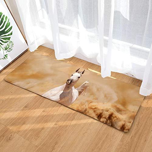XIAOZHANG carpet runner White horse Coral Fleece modern Entrance Living Room Door Mat Bedroom Bathroom Kitchen Non slip washable utility 60x90CM