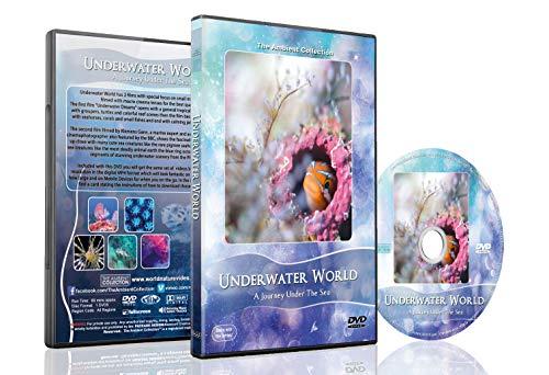 Ozean DVD – Unterwasser Welt – Unvergesslische Riff Szenen der Natur und Meeresbewohner in der Unterwasserwelt