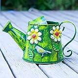 dhcsf Pequeña regadera Hoja de Hierro Regadera Pot, Plantas regadera for Plantas de Interior al Aire Libre Herramientas de jardinería (Verde) Regadera para Plantas