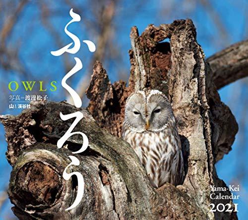 カレンダー2021 ふくろう (月めくり・壁掛け) (ヤマケイカレンダー2021)の詳細を見る