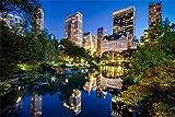 Rompecabezas Para Adultos 1000 Piezas Night Central Park Nueva York De Madera Montaje Personalizado