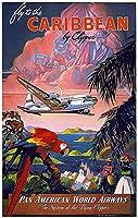カリブ海に飛ぶ、ブリキのサインヴィンテージ面白い生き物鉄の絵画金属板ノベルティ