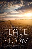 There Is Peace Within The Storm: A Daily Christian Guide to Recovery Using God's 30-Day Plan