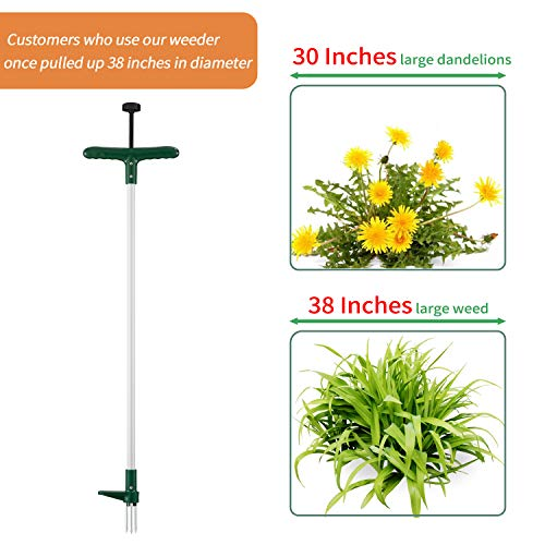 Walensee Weed Puller, Stand Up Weeder Hand Tool, Long Handle Garden Weeding Tool with 3 Claws, Hand Weed Hound Weed Puller for Dandelion, Standup Weed Root Pulling Tool and Picker, Grabber (1 Pack)