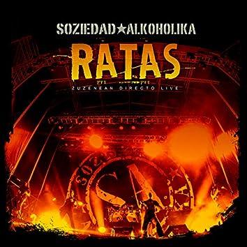 Ratas (En Directo)