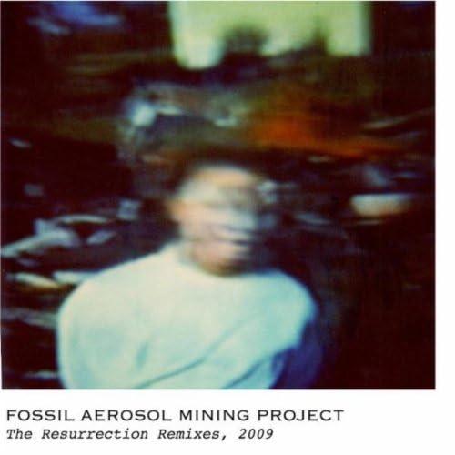 Fossil Aerosol Mining Project