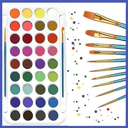 321OU Watercolor Paint Set, 36 Colors Professional Watercolor Paint with 12 Pcs Watercolor Artist Set Brush for Kids Adults Artists Students