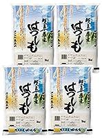 みのライス 【 精米 】 岐阜県産ハツシモ 20Kg(5kg×4) 令和2年産