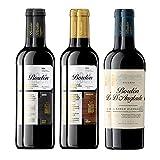 Pack Vinos Tintos Clásicos de La Rioja (6 Botellas) - 2 Bordón Reserva + 2 Bordón Gran Reserva + 2 Bordón D'Anglade Reserva