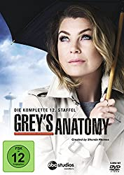 Grey's Anatomy – Staffel 12 (DVD)
