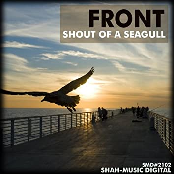 Shout of a Seagull