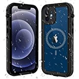 ShellBox for iPhone 12 Case,Waterproof Case with 【Built in Screen Protector】 Full Body Protective Heavy Duty Shockproof Dustproof 【IP68 Waterproof】 Case for iPhone 12 6.1 inch (Black/Clear)
