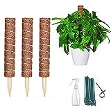 LYFETC Tutores para Plantas Trepadoras 3piezas 40cm Fibra de Coco Soporte para Plantas Interior...