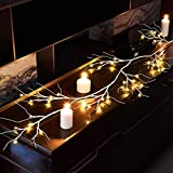 Hairui Birch Garland Lights 6FT 48 LED Battery Operated - Lighted Twig Vine with Timer for Christmas Fireplace Decoration Indoor Outdoor Use