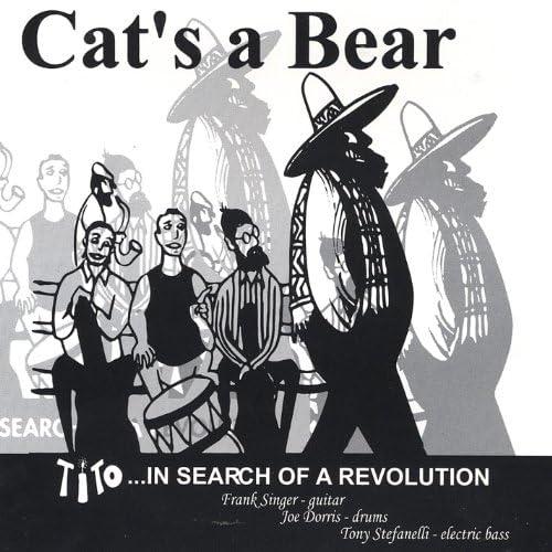 Cat's a Bear