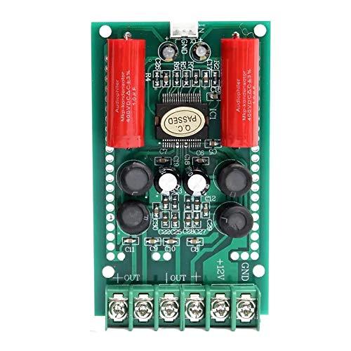 Landa tianrui DIY Electronic kit T-AMP 2 x 15W TA2024 Digital-Audio-Verstärker-Brett Mini AMP