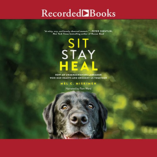 Sit Stay Heal audiobook cover art