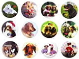 Dog puppy cute fan #2 Awesome Quality Lot 12 New Pins Buttons Badge brooch 1.25'