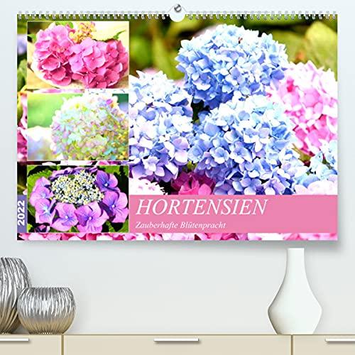 Hortensien. Zauberhafte Blütenpracht...