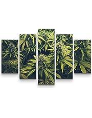 Hanfväxter 5 teilig Gesamt150x100cm