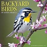 Backyard Birds 2022 Wall Calendar