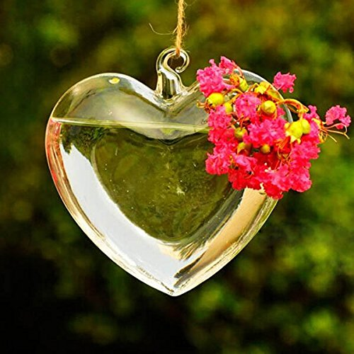 Heart Shape Hanging Glass Vase Garden Hydroponic Plants Container