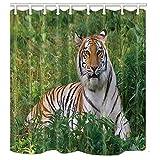 Dana34Malory Safari Duschvorhänge für Badezimmer, Wildtier Tiger liegt auf dem Gras des grünen Waldes, Polyester, wasserdicht, 91,4 x 182,9 cm