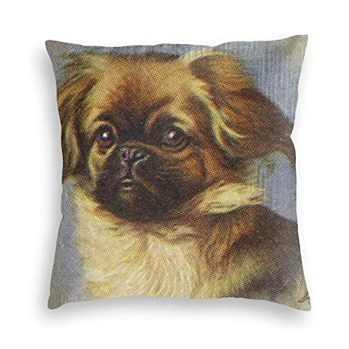 Wi Walking Pi Pekingese Cute Charm Dog Retro Puppy Home Premium Velvet Throw Pillow Cases Decorative Throw Pillow Covers Decorative Pillowcase Cushion Covers 18x18 20x20 24x24 26x26 Inches