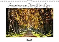 Impressionen aus Ostwestfalen-Lippe (Wandkalender 2022 DIN A4 quer): Stimmungsvolle Landschaftsfotografie aus dem Lipperland und Ostwestfalen (Monatskalender, 14 Seiten )