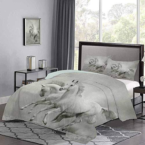 Yoyon Kinder-Quilt-Set Laufpferde als Symbol für Leidenschaft für die Freiheit Spirituelle Kreaturen Fotodruck Federbettbezug Keine Risse oder Verfärbungen Schwarzweiß