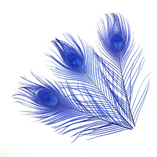 Shekyeon 10-12inch Dyeing Peacock Feathers Bleached Plume Wedding Table Centerpiece Pack of 10(royal blue)