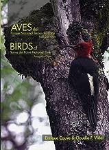 birds of torres del paine