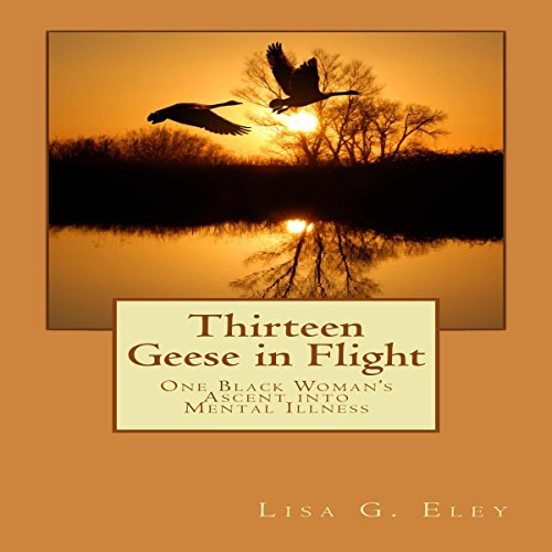 Thirteen Geese in Flight: One Black Woman's Ascent into Mental Illness audiobook cover art