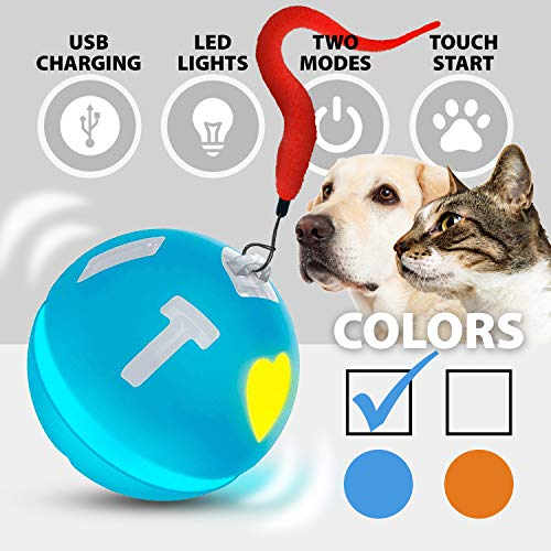 Wicked Ball Smart Interactive Toy for Cats and Dogs Automatic Rolling USB Rechargeable Two Running Modes with Colorful Lights Durable Self Rotating Gravity Sensor Fun Gift for Cats & Dogs