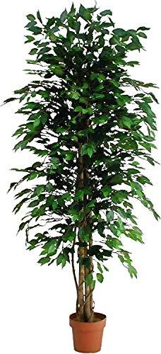 Ficus Benjamin Verde - Árbol de decoración de interior artificial con tronco real - Alto 125 cm - Ancho 50 cm