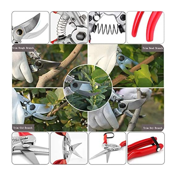 "Hylejhjy 8"" bypass steel pruning shears with stainless sk5 steel blades+straight tip gardening shears garden shears garden clippers florist scissors hand pruners garden tools gardening tools set,red 5 →▲←【premium material and specifications】-the pruning shears are very sharp. Crafted of high carbon steel with ultra-fine polishing technology,which is strong and abrasive resistance, the blades will stay sharp for a long time. Blades material: stainless steel. Handle material: aluminium alloy handle(bypass pruning shears)-stainless steel handle (straight tip gardening shears),package includes:1 x bypass pruning shears,1 x straight tip gardening shears. →▲←【non-slip handle】-our pruning shears feel is good. Ergonomically designed stainless steel handles(straight tip gardening shears) and aluminium alloy handle(bypass pruning shears) fit nicely with your hands and the strong covers ensure maximum cutting comfort and non-slip grip. →▲←【long reach】-with long traight blades, these shears will help you reach stems inside bundles without damaging the other stems and branches, makes picking and trimming a easy task. Sharp blades ensure quick and precision cuts, suitable for sutting stems, light branches of trees, rose bush, shrubs, etc."