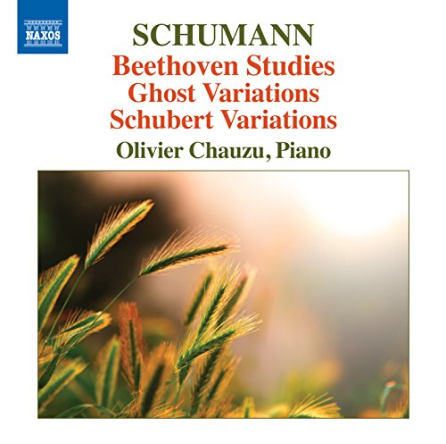 Étude Variations on a Theme of Beethoven, WoO 31, Anh. F25: Étude A7, Idee aus Beethoven
