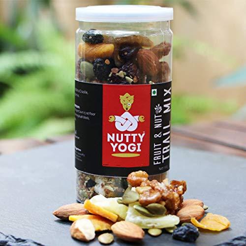 Fruit & Nut Trail Mix 100 gm (3.52 OZ)