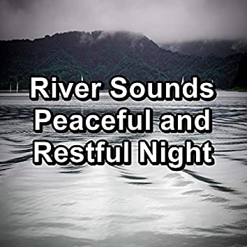 River Sounds Peaceful and Restful Night