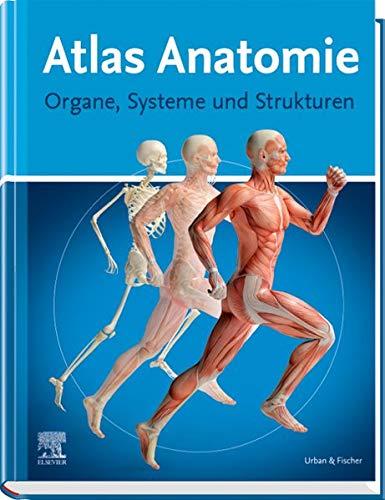 Atlas Anatomie: Organe, Systeme und Strukturen