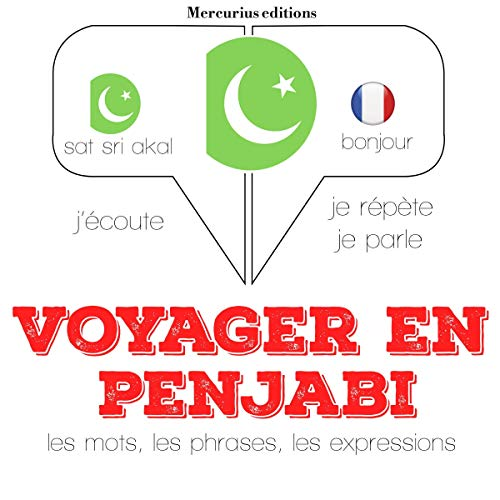 Voyager en penjabi, 300 mots phrases et expressions essentielles et les 100 verbes les plus courants cover art