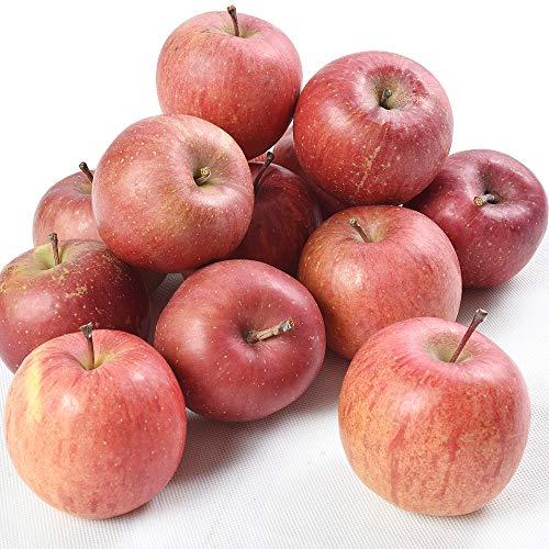 国華園 食品 りんご 青森産 ちびふじ 10kg 1箱