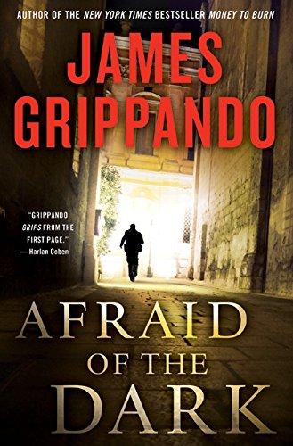 Image of Afraid of the Dark (Jack Swyteck Novel)