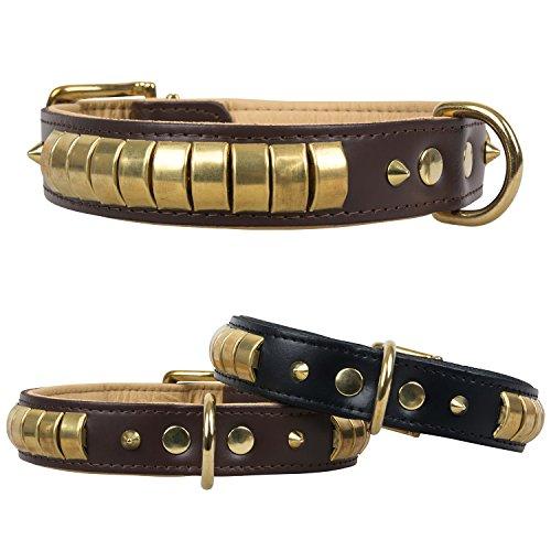 Collar de cuero Chesmu dorado y latón, collar de piel auténtica para perros, color negro, 65 cm/35 mm