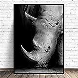 AQgyuh Puzzle 1000 Piezas Cuadro Animal Rinoceronte Blanco y Negro en Juguetes y Juegos Rompecabezas de Juguete de descompresión intelectual50x75cm(20x30inch)