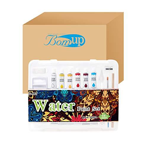 12 Color Water Paint Set-Art Paint Kit with Paint Brush, Professional Artist...