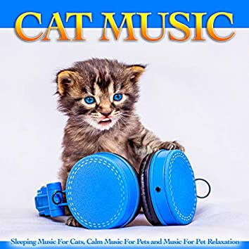 Cat Music: Sleeping Music For Cats, Calm Music For Pets and Music For Pet Relaxation
