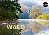 Im Deutschen Wald 2022 - ein Notizkalender (Wandkalender 2022 DIN A2 quer): Sehnsuchtslandschaften zum Traeumen und Entfliehen (Geburtstagskalender, 14 Seiten )