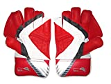 SS Match Cricket Wicket Keeping Gloves ' Mens Size, SS Cotton Inner Gloves Included