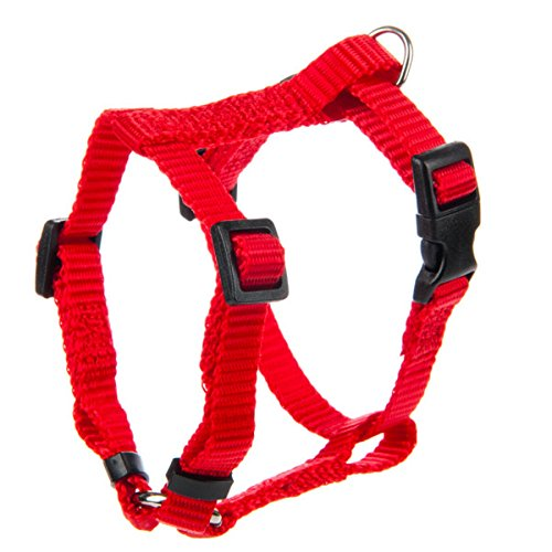 Grreat Choice Adjustable Harness
